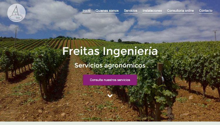 Proyecto Freitas Ingeniería