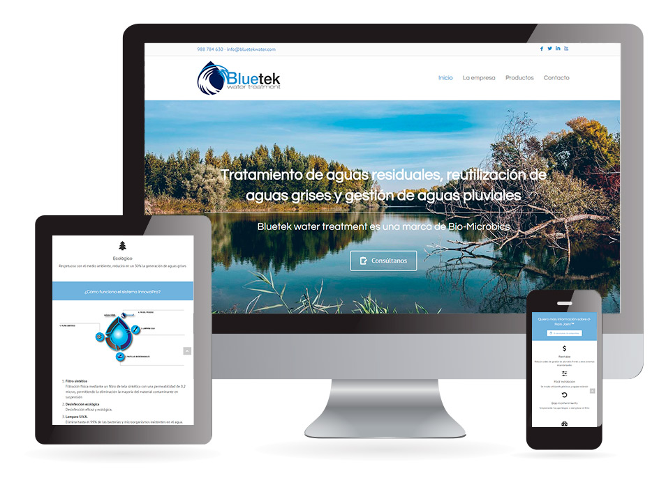 Desarrollo web Bluetek
