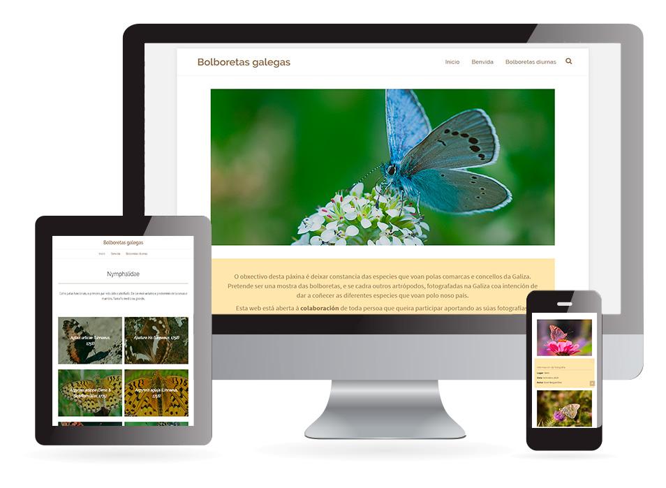 Página web Bolboretas galegas