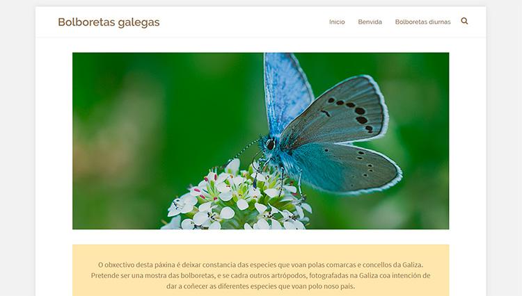 Diseño web Bolboretas galegas