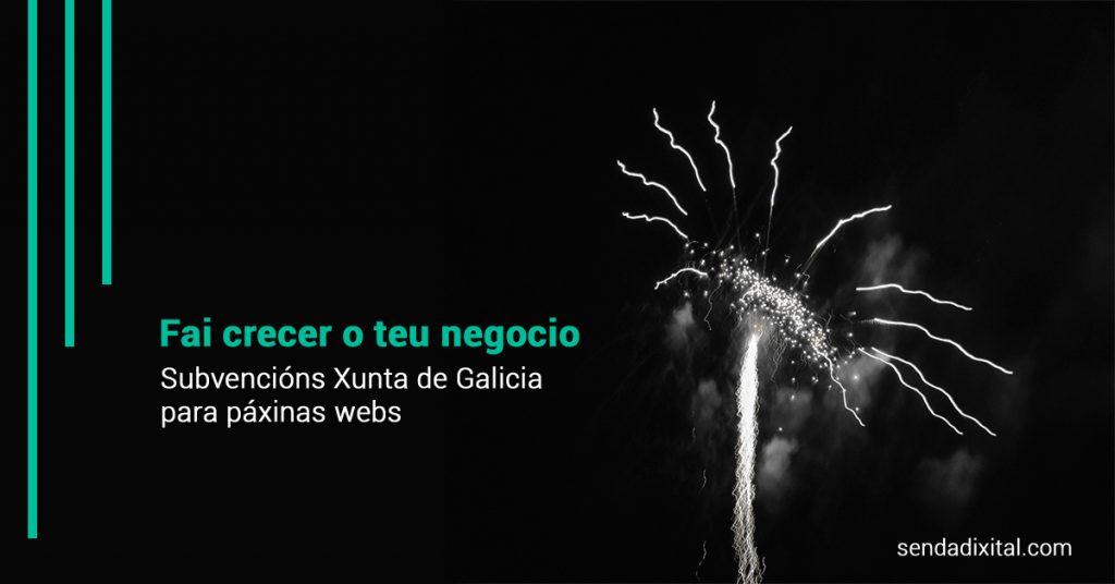 Subvenciones páginas web Xunta de Galicia. Sendadixital