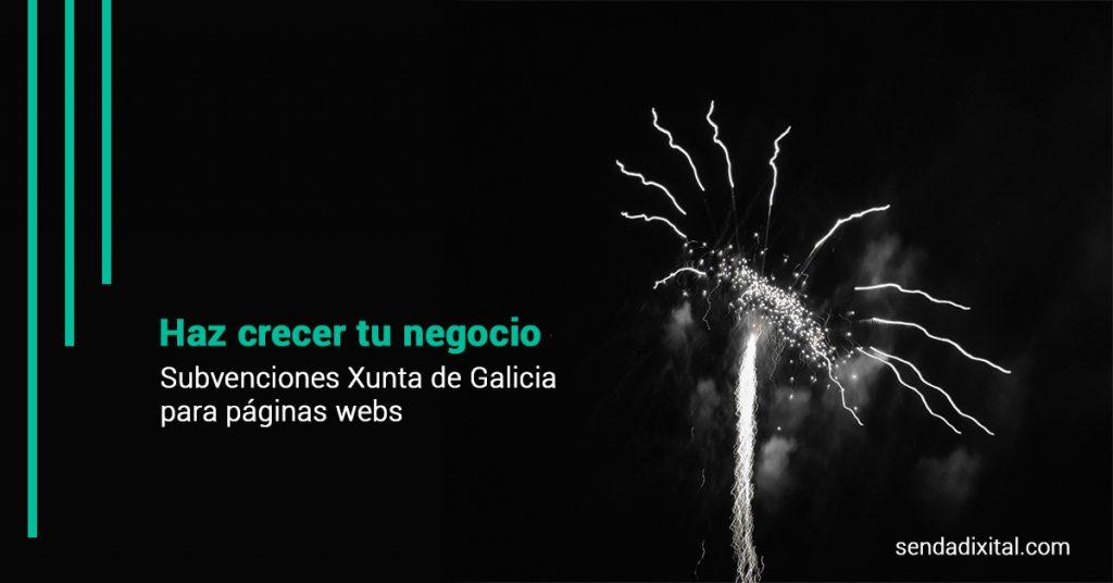 Haz crecer tu negocio. Subvenciones de la Xunta de Galicia para crear páginas webs