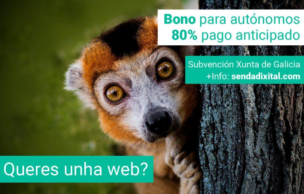 Bono autónomos Sendadixital Xunta de Galicia